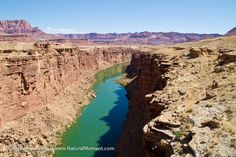 Canyoneers Grand Canyon River Trips: Navajo Bridges and Colorado River, Marble Canyon Near Lees Ferry