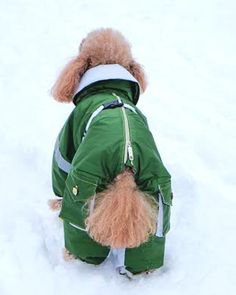 Custom Dog Snowsuit (Size M).  Any Breed.  Free Shipping!