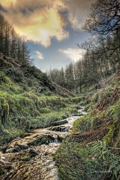 Taken at Goyt Valley in the Peak District National Park, near Macclesfield,Cheshire. UK
