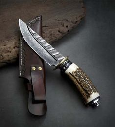 Jungle Hunter Damascus inch Blade Fixed Knives Stag Horn Cool Knives, Knives And Tools, Knives And Swords, Bushcraft Knives, Tactical Knives, Damascus Knife, Damascus Steel, Collectible Knives, Best Hunting Knives
