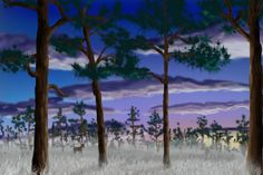 Photo by Mary Webb Sunrise Painting, Random Drawings, Doodles, Photoshop, World, Friends, Artist, Amigos, Artists