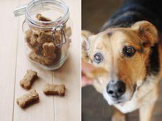 Homemade dog treats!