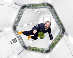 New system allows growth of fresh food for astronauts