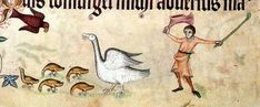 A gooseherd resists the attack from a bird of prey on his little flock of geese.   Luttrell Psalter, England circa 1330-1340, London, British Library, Add. Ms. 42130, fol. 166V.