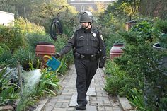Pop-Culture :  Lt. Pike is placed in the most real-world situations of watering flowers in a garden, transformed in a meme by adding Pike in it with his pepper-spray canister replaced by a watering can. His posture is revealed to be perfectly uniform with the activity of watering flowers, rather than harming peaceful protesters. He seems very peaceful - this suggesting outrage when thinking about the disproportion between his body language and his actions.    Author of meme: Sluz (Reddit)   