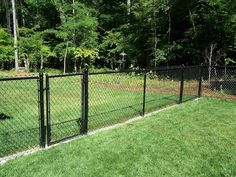 95 Best Cheap Fence Ideas Images In 2018 Fence Diy