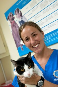 A RUSVM clinical student holds and examines a cat