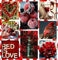 Christmas Collage, Winter Christmas, Spring Garden, Happy Sunday, Bujo, Happy Holidays, Collages, Colour Palettes, Mood Boards