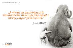 """A merge cu un prieten prin intuneric este mult mai bine decat a merge singur prin lumina."" Helen Keller, Mai, Movies, Movie Posters, Film Poster, Films, Popcorn Posters, Film Books, Movie"