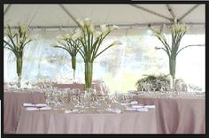 Bliss-bridal-weddings | Other Decorations
