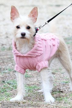 Pink cable knit dog sweater