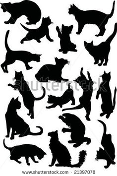 illustration with cat silhouettes collection