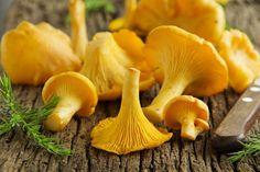 Uusi ja nopea tapa valmistella sienet pakkaseen: käytä ne uunissa | Kodin Kuvalehti
