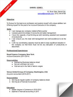 account executive resume sample more executive resume interview tips ...