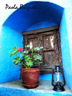 Travel Photography - Blue Brown - Geranium - Arequipa Peru. $30.00, via Etsy.
