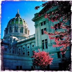 Pennsylvania State Capitol - Harrisburg, PA. My home.