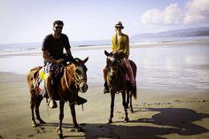 riding horses on the beach. want.
