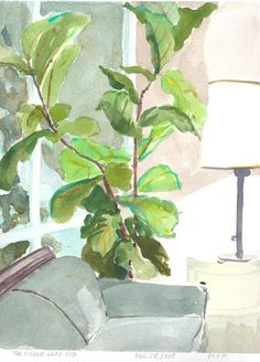 """$100USD. Fiddle leaf fig tree This plant was taking over my living room. Gorgeous as it was I've since trimmed it so it won't tip over. Image size including title text: 11″ x 8 1/4″ Paper size: 13 1/4″ x 9 1/2″ Dated & Titled: The Fiddle Leaf Fig, December 28, 2018. Initialed """"MYM"""" Painting is unframed. (PayPal, watercolour, watercolor, painting, small art, Canadian artist, still life, plants, fig tree, for sale) Watercolor Leaves, Watercolor Paintings, London Plane Tree, Fiddle Leaf Fig Tree, Fiddle Fig, Clematis Trellis, Beautiful Morning, Small Art, Canadian Artists"""