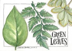 watercolor journaling | Sketchbook & Watercolor Journal Style Lesson Two | Flickr - Photo ...