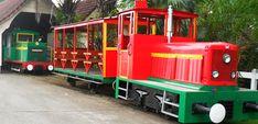 Les rails de la canne à sucre - Le train des plantations