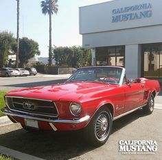 1967 Mustang Convertible Candy Apple Red