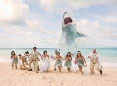 22 Craziest and Most Creative Wedding Photos Ever Wedding Photo idea! So perfect for me I really want a beach wedding and this would be hilarious! So perfect for me I really want a beach wedding and this would be hilarious! Funny Wedding Photos, Beach Wedding Photos, Beach Wedding Photography, Wedding Pictures, Sunset Beach Weddings, Beach Pictures, Perfect Wedding, Dream Wedding, Wedding Day