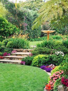 Gardening for Backyard