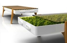 Living Green: Hydroponic Coffee Table