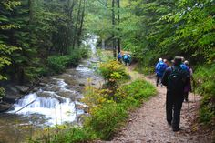 Cascades du Hérisson. Ain, Cascades, Medieval Town, Waterfall, Travel, Law School, Viajes, Waterfalls, Destinations