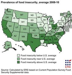 USA Food Insecurity by state Environmental Ethics, Going To Bed Hungry, Us Department Of Agriculture, Food Insecurity, Words Worth, Food For Thought, Safe Food, America, I'm Afraid