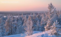 Ounasvaara hill is located only some 2 km from Rovaniemi City Center and it hosts also a ski resort called Santa Claus Village, Lapland Finland, My Road Trip, Holiday Destinations, Winter White, Holiday Travel, Where To Go, Arctic, Winter Wonderland