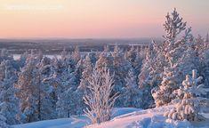 Vue hivernale de Rovaniemi depuis les hauteurs d'Ounasvaara en Laponie, Finlande