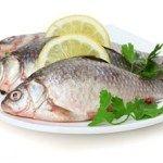 poza trei pesti proaspeti Lose Fat, Fish, Diet, Health, Pisces