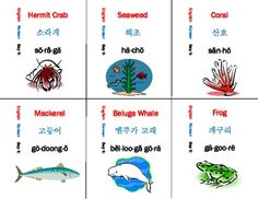 Different Colors in Korean – With Free Flashcard Printout ...