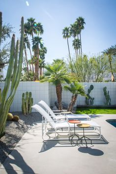 Palm Springs Home Tour - Midcentury Architecture and Interior Design - Cool and Collected Palm Springs Houses, Palm Springs Style, Modern Landscaping, Backyard Landscaping, Outside Living, Outdoor Living, Spring Landscape, Ideas Hogar, Desert Homes