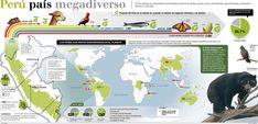 animales en peligro de extincion PERU - Buscar con Google