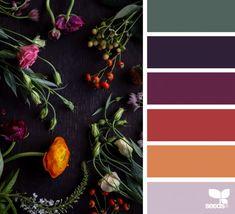 Colours Color Flora Design Seeds Lawn And Landscape Watering Tips Article Body: Fall Color Palette, Colour Pallette, Color Palate, Colour Schemes, Paint Color Combos, Design Seeds, Pantone, Forest Color, Flora Design