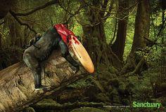 Campanha usa imagens chocantes para alertar sobre risco que desmatamento traz à fauna - GALILEU | Galerias de fotos