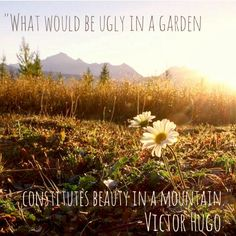 """""""What would be ugly in a garden constitutes beauty in a mountain."""" Victor Hugo #Glacier #Montana"""
