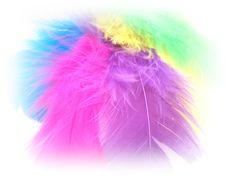 Pene colorate (0,40 LEI la butterfly.shop.breslo.ro) Butterfly, Shop, Handmade, Jewelry, Fashion, Moda, Hand Made, Jewlery, Jewerly