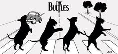 The Beatles, Abbey Road: The Bultles