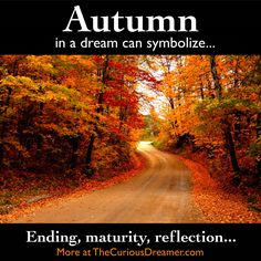 Autumn as a dream symbol can mean... More at TheCuriousDreamer... #dreammeaning #dreamsymbol