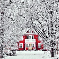 Winter magic - beautiful red house stands out in the snow. Such a winter wonderland! Winter Szenen, Winter Time, Winter Christmas, Magical Christmas, Merry Christmas, Winter Magic, Winter House, Christmas Time, Christmas Feeling