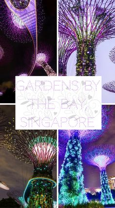 11 cant miss things to do in singapore