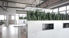 industrial style commercial office interiors - Buscar con Google