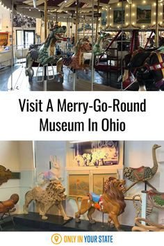 Visit this unique, family-friendly merry go round museum in Sandusky, Ohio. It's the perfect mix of history and fun. Kids and adults will love this day trip. Ohio Attractions, Best Bucket List, Sandusky Ohio, The Buckeye State, Go Ride, Hidden Beach, Merry Go Round, Swimming Holes, Covered Bridges