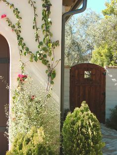 the gate is cool!  Santa Barbara Style Design Ideas, Pictures, Remodel, and Decor - page 11