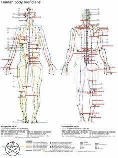 De mai bine de 2000 ani, medicina tradițională chinezească privește sistemul corporal fizic uman ca un complex de structuri de diverse niveluri de vibrație, în esență compuse (în această viziune) din corpul fizic, ki-ul (forța vitală) și spirit. Dacă despre corpul fizic și despre spirit putem afla lesne și în civilizațiile vestice și în spețăRead More