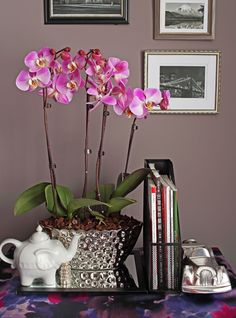 Elegant Double Orchid Planter Adds Color to Any Room