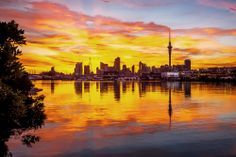 spectacular Auckland sunrise heralds another beautiful day in paradise. Have you ever seen a sunrise like this? This is definitely one of the most beautiful places I've been to. New Zealand Houses, Air New Zealand, Hong Kong, Holland America Cruises, Romantic Places, China, Adventure Is Out There, Best Vacations, Auckland